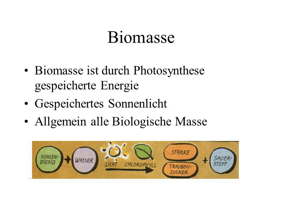 Biomasse Biomasse ist durch Photosynthese gespeicherte Energie Gespeichertes Sonnenlicht Allgemein alle Biologische Masse