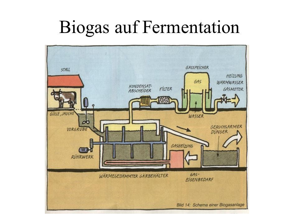 Nutzung von Biogas Nutzung von Biogas in : Gasturbine (z.B.