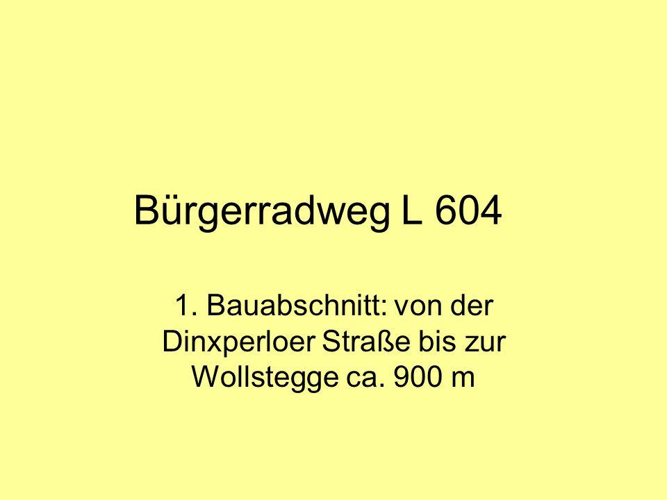Aktueller Sachstand  Brücke über den Holtwicker Bach ist fertig und wurde vom Land NRW bezahlt  Der Radweg wird zunächst auf der süd- westlichen Seite (Wesselbaas) geführt  Die Querung zur nord-östlichen Seite erfolgt in Höhe der früheren Bäckerei Essing (weisse Tür)  Am 23.02.2013 erfolgte in Abstimmung mit der Stadt Bocholt und Straßen-NRW eine Baumfällung