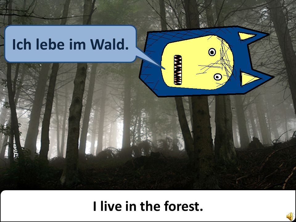 I live in the forest. Ich lebe im Wald.