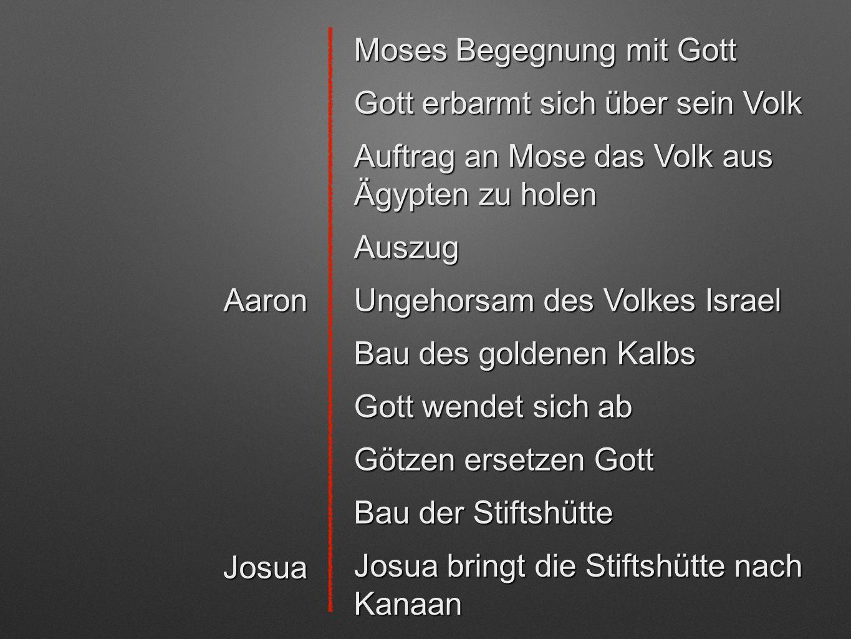 Moses Begegnung mit Gott Gott erbarmt sich über sein Volk Auftrag an Mose das Volk aus Ägypten zu holen Auszug Aaron Ungehorsam des Volkes Israel Bau