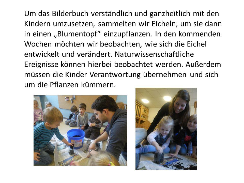 """Um das Bilderbuch verständlich und ganzheitlich mit den Kindern umzusetzen, sammelten wir Eicheln, um sie dann in einen """"Blumentopf einzupflanzen."""