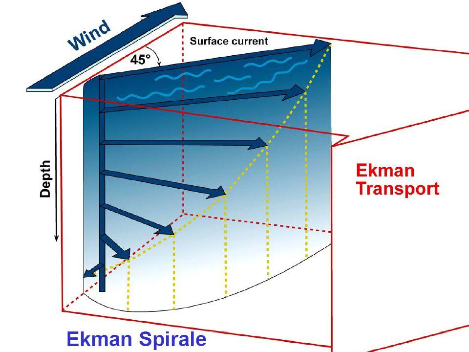 03.12.2008 Tutorium Physische Geographie 1 - Florian Vogler - Mi 15:45 - 17:15 Uhr - Raum 3065 24 Was beschreibt die Ekman-Spirale?