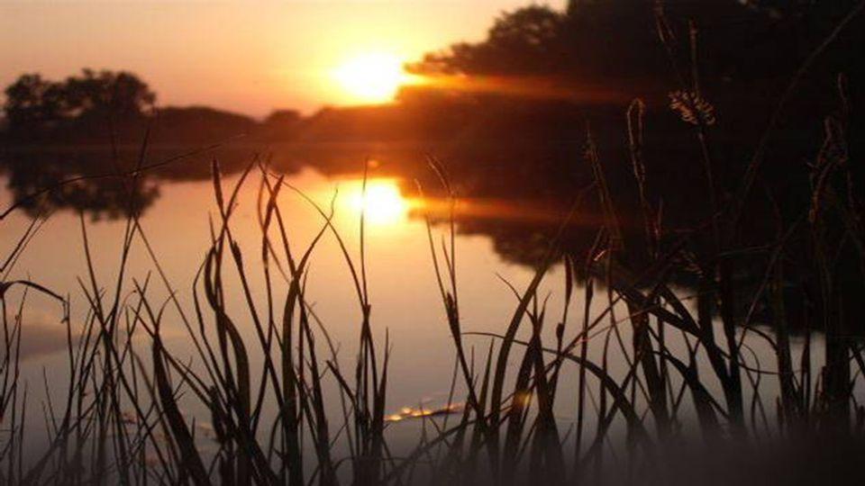 Solange es einen Suchenden gibt, kann es keine Stille geben. Krishnamurti