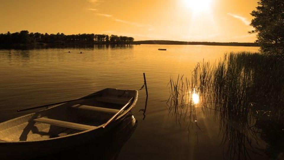 Stille des Geistes kann nicht durch eine Willensanstrengung erreicht werden. Stille tritt dann ein, wenn kein Wille mehr da ist. Krishnamurti
