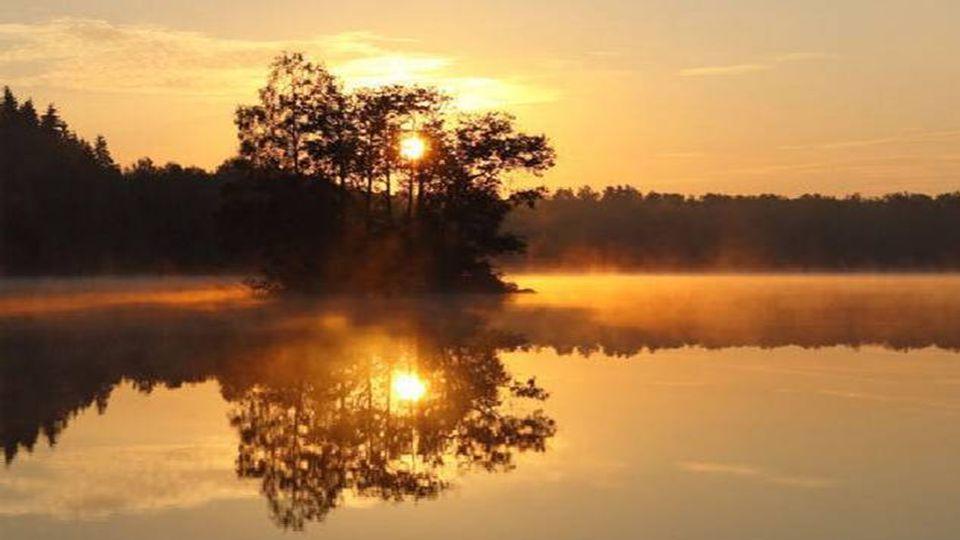 Im Herbst steht in den Gärten die Stille, für die wir keine Zeit haben. Victor Auburtin