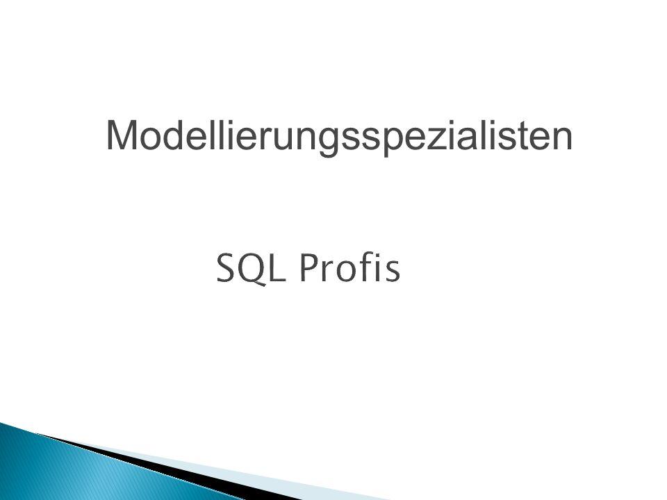 Modellierungsspezialisten