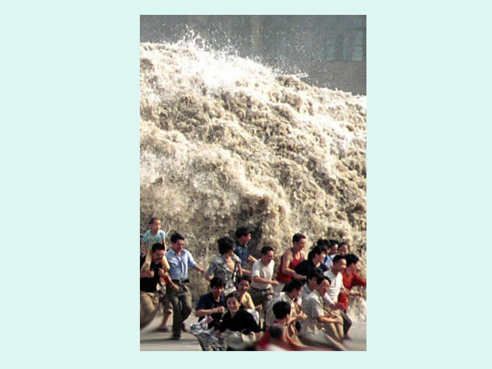Auflösungen 5)Auf dem Schild steht SWAD 6)Das Mädchen mit dem roten Ohrring weint und lacht gleichzeitig 7)Die Welle ist ca.7 Meter hoch 8)Das Mädchen trägt 2 Armreifen