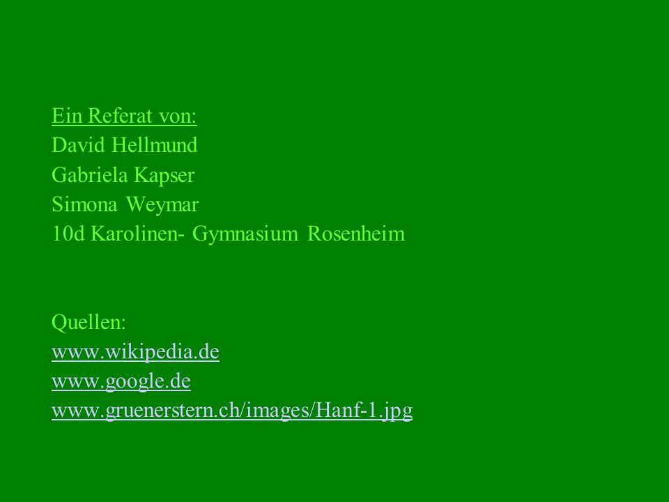 Ein Referat von: David Hellmund Gabriela Kapser Simona Weymar 10d Karolinen- Gymnasium Rosenheim Quellen: www.wikipedia.de www.google.de www.gruenerst