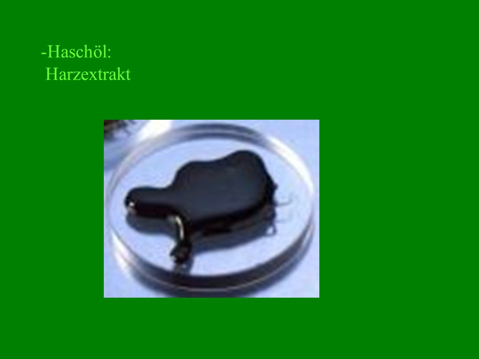 -Haschöl: Harzextrakt