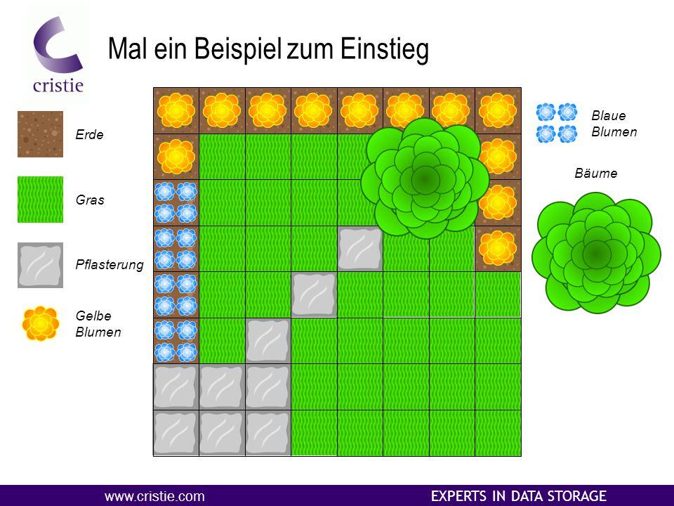 www.cristie.com EXPERTS IN DATA STORAGE Mal ein Beispiel zum Einstieg Erde Gras Pflasterung Gelbe Blumen Blaue Blumen Bäume