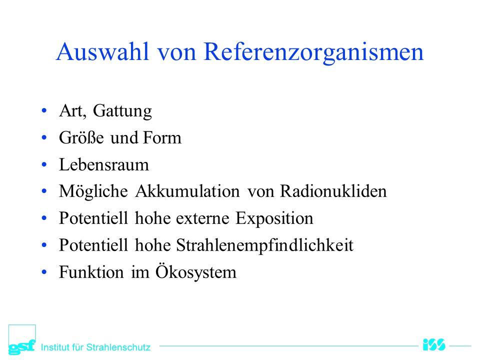 Auswahl von Referenzorganismen Art, Gattung Größe und Form Lebensraum Mögliche Akkumulation von Radionukliden Potentiell hohe externe Exposition Poten