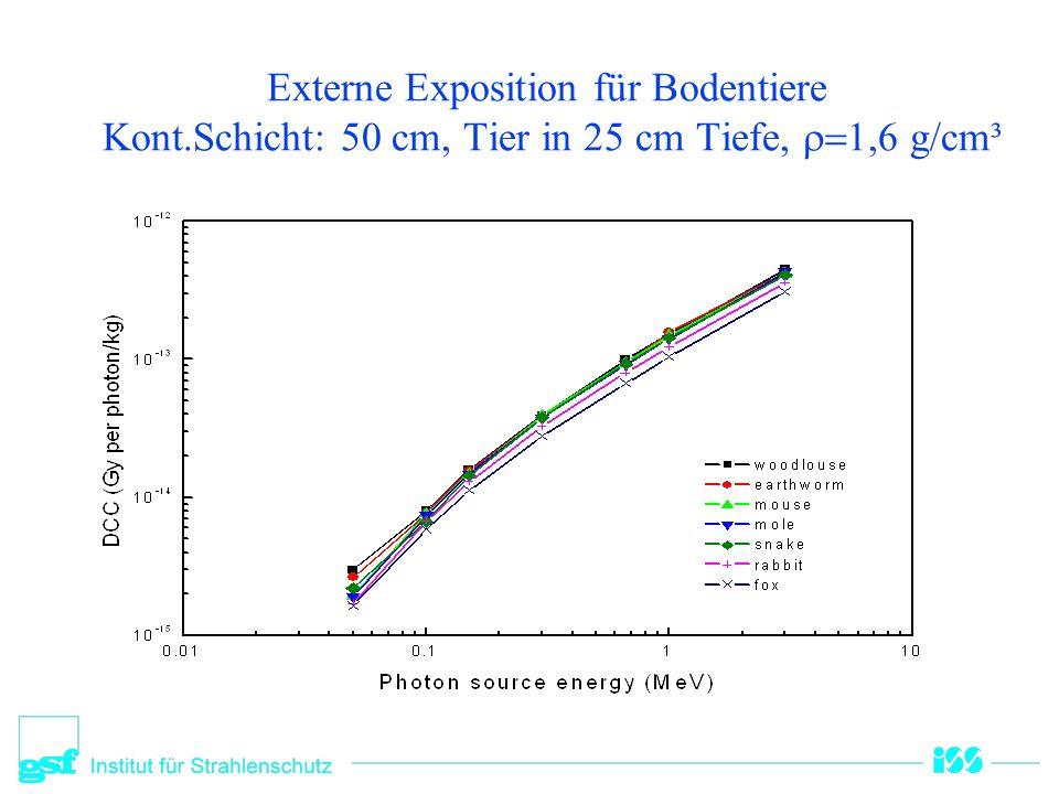 Externe Exposition für Bodentiere Kont.Schicht: 50 cm, Tier in 25 cm Tiefe,  1,6 g/cm³