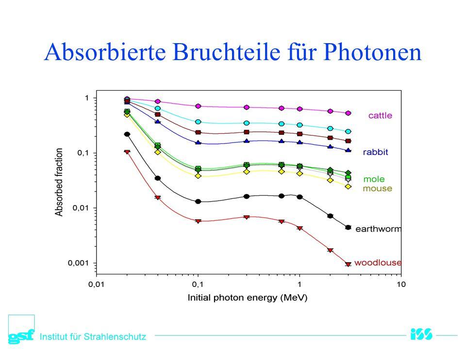 Absorbierte Bruchteile für Photonen