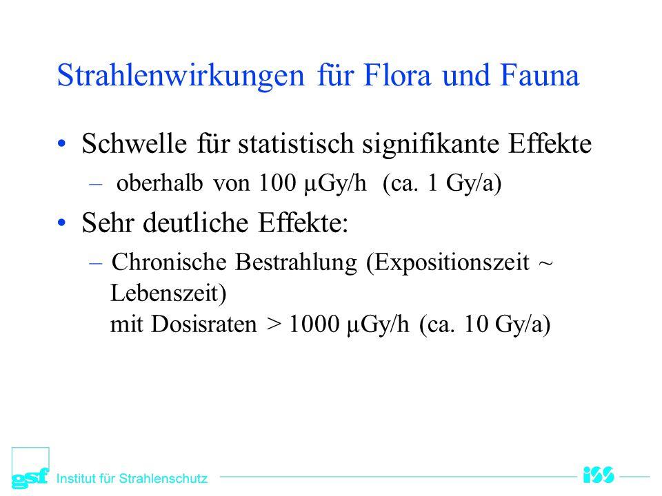 Strahlenwirkungen für Flora und Fauna Schwelle für statistisch signifikante Effekte – oberhalb von 100 µGy/h (ca. 1 Gy/a) Sehr deutliche Effekte: –Chr