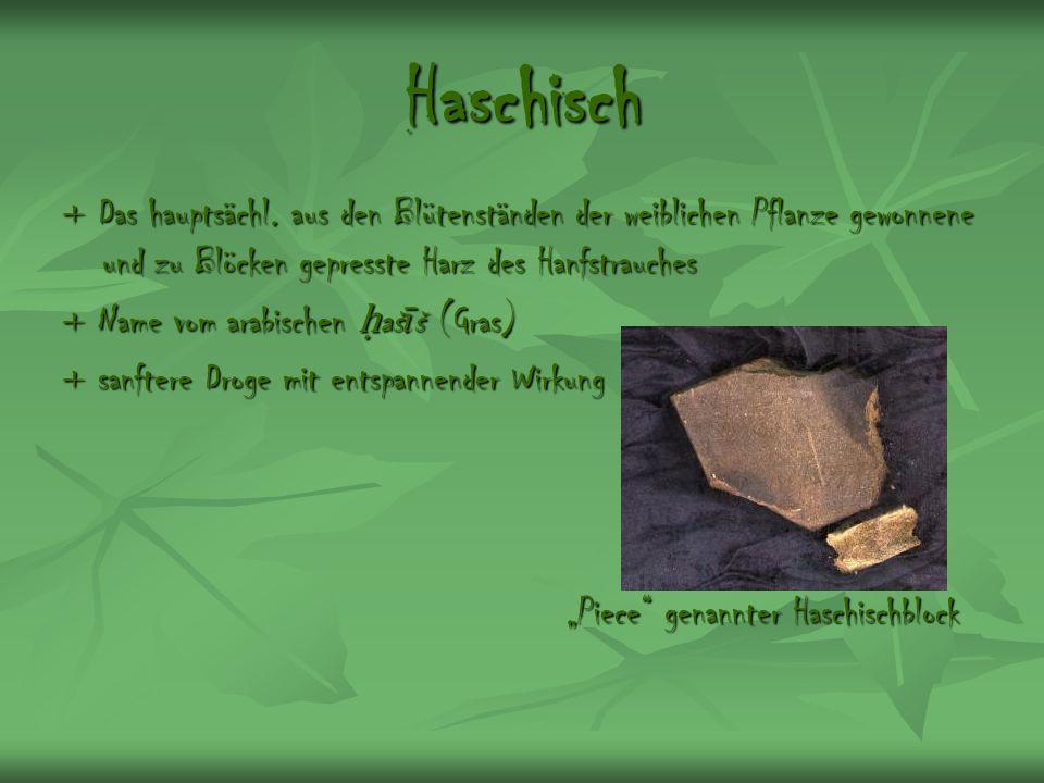 Haschisch + Das hauptsächl. aus den Blütenständen der weiblichen Pflanze gewonnene und zu Blöcken gepresste Harz des Hanfstrauches + Name vom arabisch