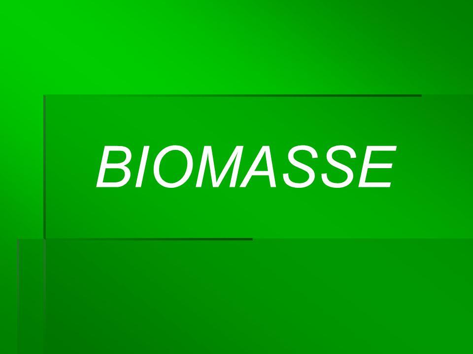 Was ist Biomasse.