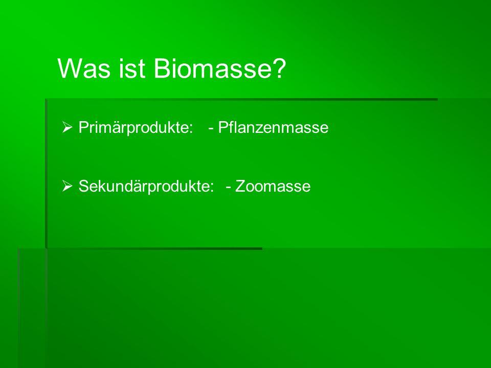 Was ist Biomasse?  Primärprodukte: - Pflanzenmasse  Sekundärprodukte: - Zoomasse