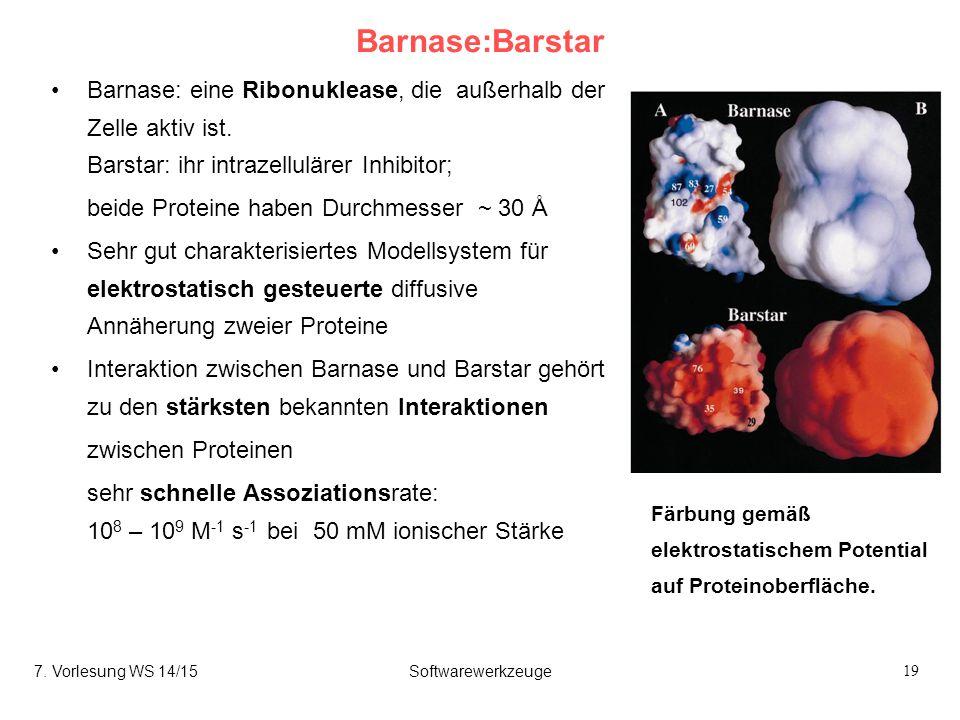 19 Barnase:Barstar Barnase: eine Ribonuklease, die außerhalb der Zelle aktiv ist. Barstar: ihr intrazellulärer Inhibitor; beide Proteine haben Durchme