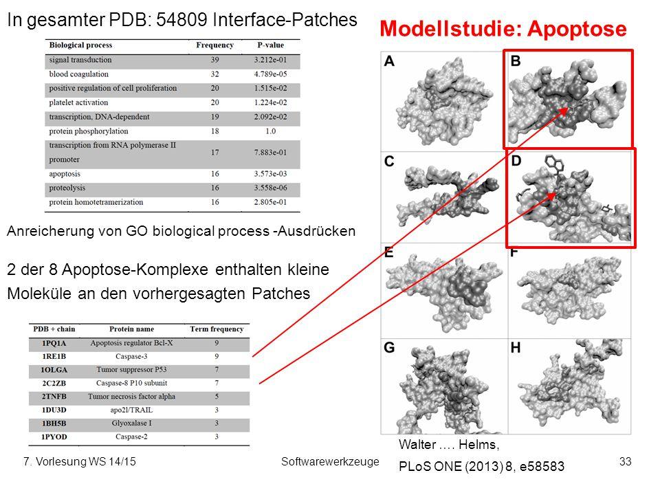 7. Vorlesung WS 14/15Softwarewerkzeuge33 Modellstudie: Apoptose Anreicherung von GO biological process -Ausdrücken 2 der 8 Apoptose-Komplexe enthalten