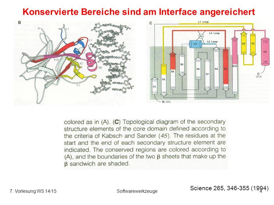 Konservierte Bereiche sind am Interface angereichert Science 265, 346-355 (1994) 7. Vorlesung WS 14/15Softwarewerkzeuge4