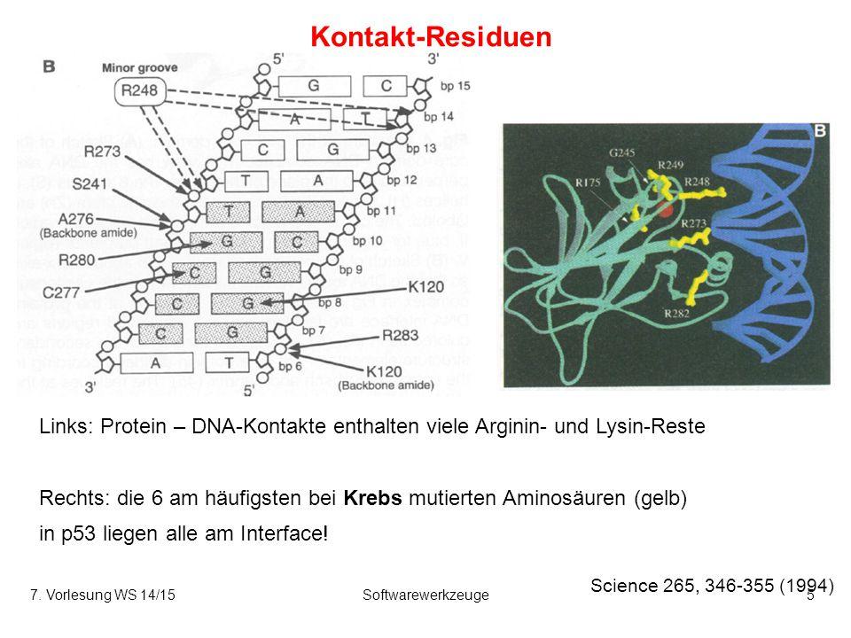 Kontakt-Residuen Science 265, 346-355 (1994) 7. Vorlesung WS 14/15Softwarewerkzeuge5 Links: Protein – DNA-Kontakte enthalten viele Arginin- und Lysin-