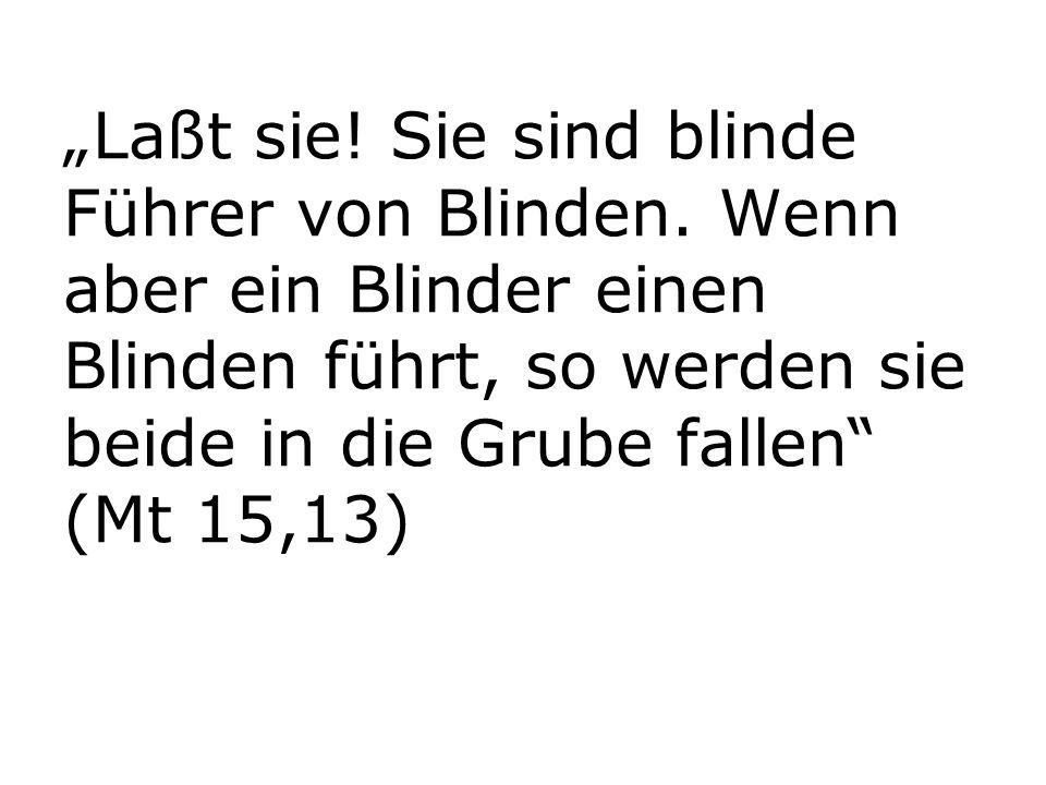 """""""Laßt sie! Sie sind blinde Führer von Blinden. Wenn aber ein Blinder einen Blinden führt, so werden sie beide in die Grube fallen"""" (Mt 15,13)"""