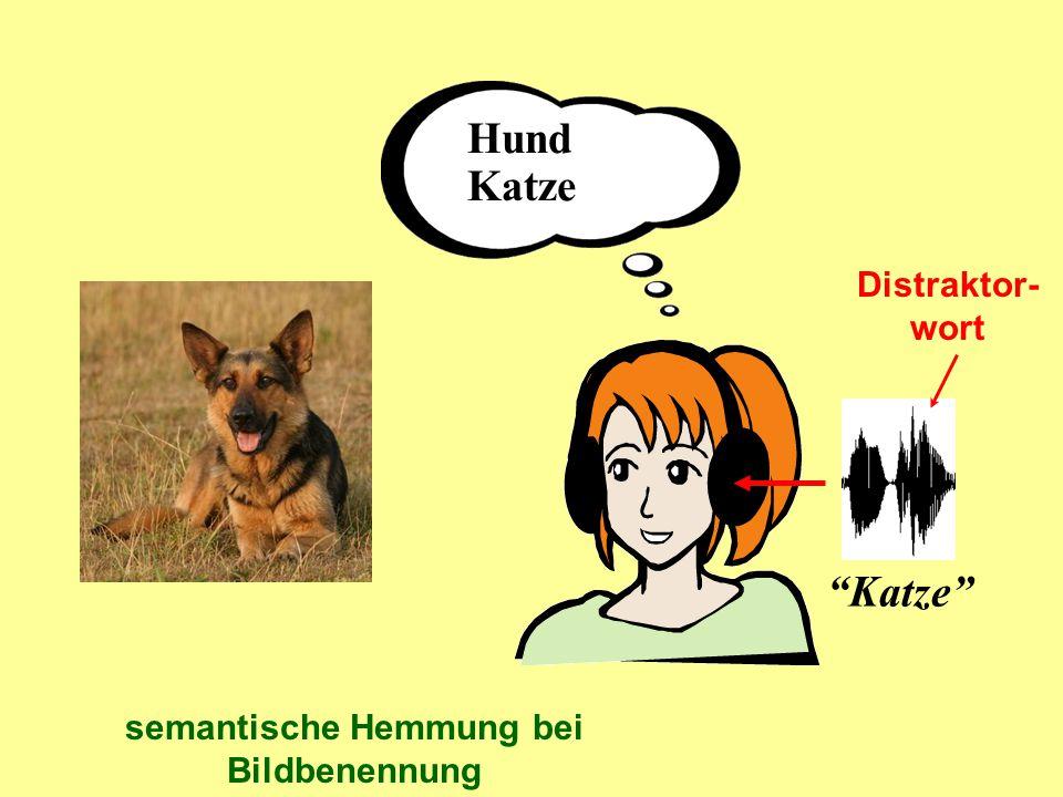 """Hund Katze """"Katze"""" semantische Hemmung bei Bildbenennung Distraktor- wort"""