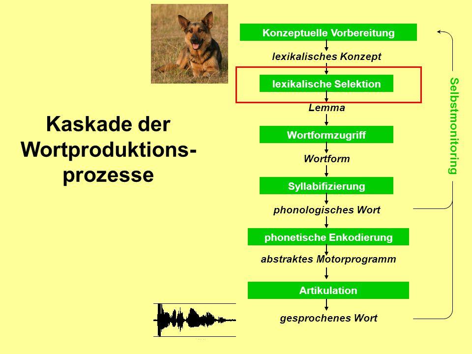 Kaskade der Wortproduktions- prozesse Konzeptuelle Vorbereitung lexikalische Selektion lexikalisches Konzept Lemma Wortformzugriff Wortform Syllabifizierung phonologisches Wort phonetische Enkodierung abstraktes Motorprogramm Artikulation gesprochenes Wort Selbstmonitoring
