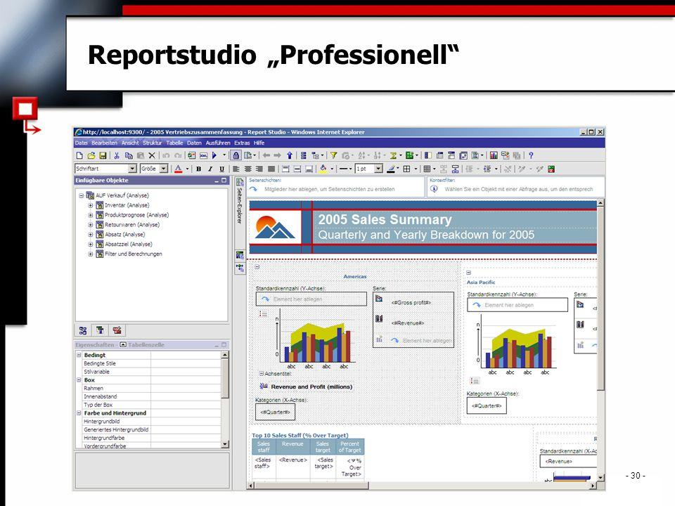 ". - 30 - Reportstudio ""Professionell"