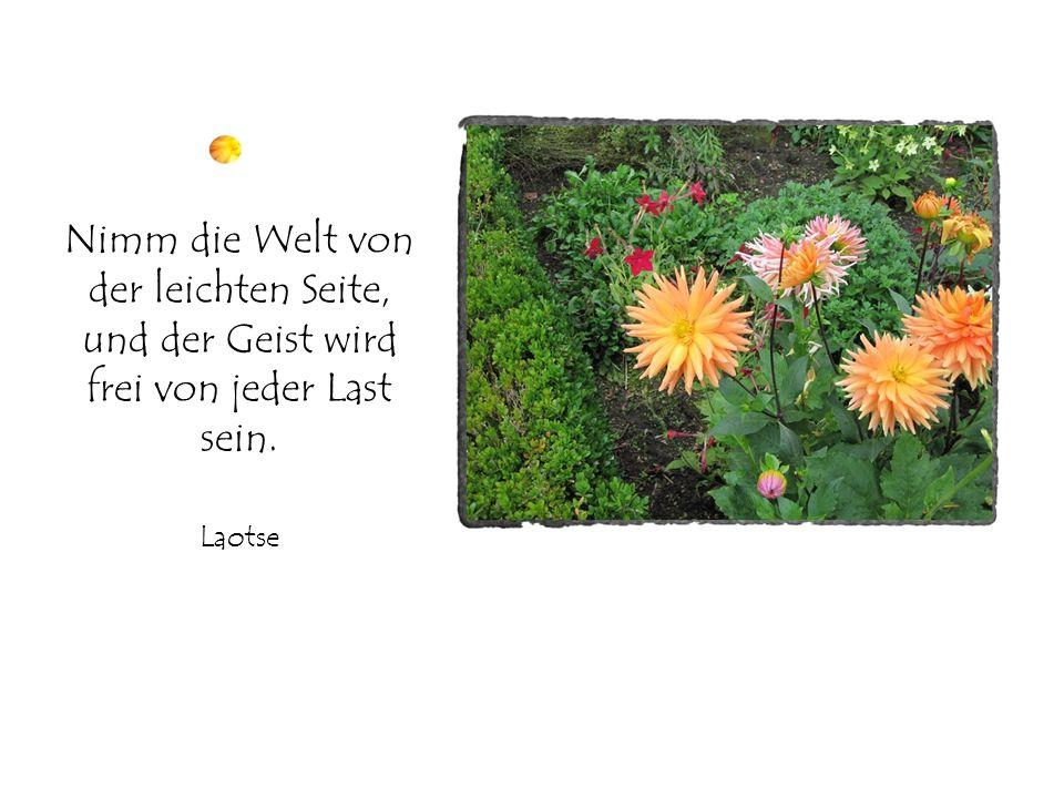 Nimm die Welt von der leichten Seite, und der Geist wird frei von jeder Last sein. Laotse