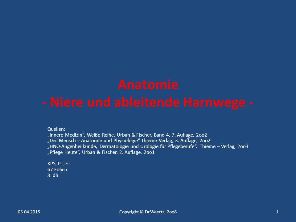 """Anatomie - Niere und ableitende Harnwege - Quellen: """"Innere Medizin , Weiße Reihe, Urban & Fischer, Band 4, 7."""