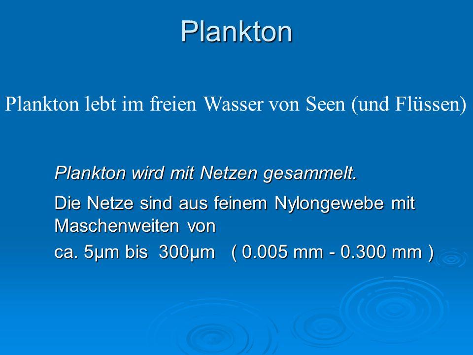 Plankton Plankton wird mit Netzen gesammelt. Die Netze sind aus feinem Nylongewebe mit Maschenweiten von ca. 5µm bis 300µm ( 0.005 mm - 0.300 mm ) Pla