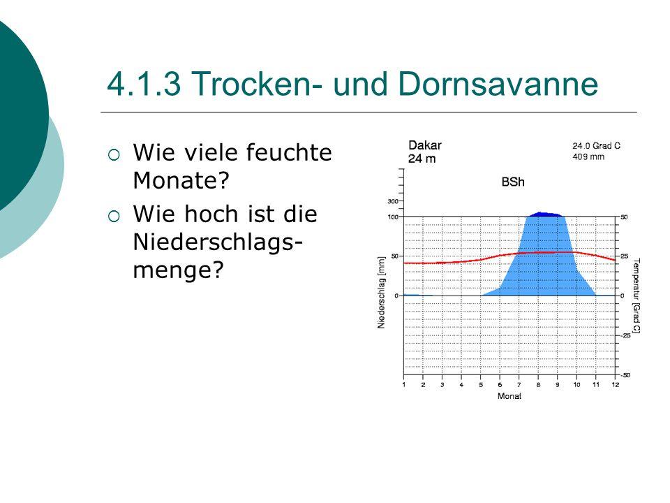4.1.3 Trocken- und Dornsavanne  Wie viele feuchte Monate?  Wie hoch ist die Niederschlags- menge?