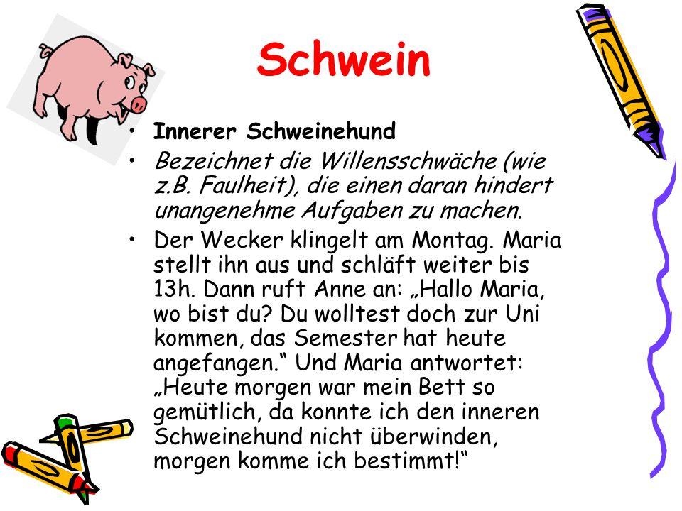 Schwein Innerer Schweinehund Bezeichnet die Willensschwäche (wie z.B. Faulheit), die einen daran hindert unangenehme Aufgaben zu machen. Der Wecker kl
