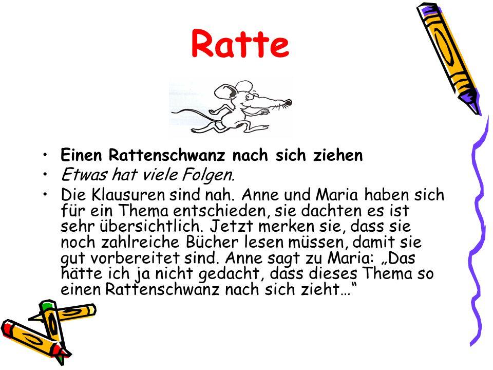 Ratte Einen Rattenschwanz nach sich ziehen Etwas hat viele Folgen.