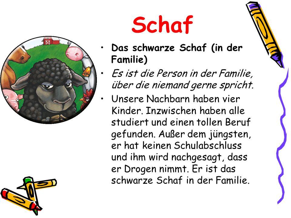 Schaf Das schwarze Schaf (in der Familie) Es ist die Person in der Familie, über die niemand gerne spricht. Unsere Nachbarn haben vier Kinder. Inzwisc