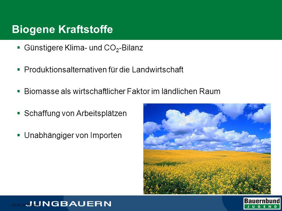 05.04.2015 /Folie 8 Biokraftstoffarten BiodieselBioethanol Raps Sojabohnen Sonnenblumen Palmöl...