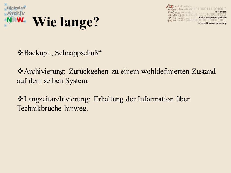 """""""Die Lösung der technischen Probleme allein reicht nicht. Kann dazu führen, dass einem aufwändigen administrativen Überbau ein eher kurzfristig angelegtes Archivierungssystem unterlegt wird."""