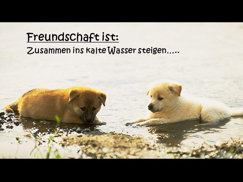 Dies ist Freundschaft Respekt und Freundschaft