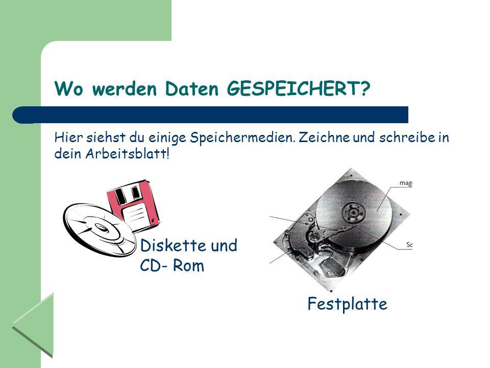 Wo werden Daten GESPEICHERT? Hier siehst du einige Speichermedien. Zeichne und schreibe in dein Arbeitsblatt! Diskette und CD- Rom Festplatte