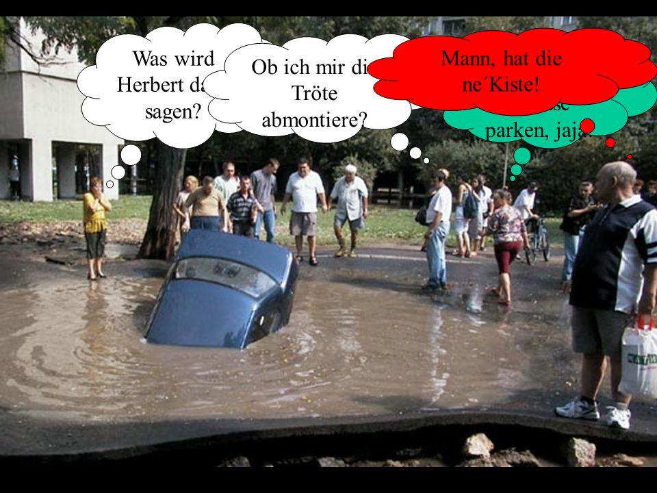Was wird Herbert dazu sagen. Mitten auf der Strasse parken, jaja.