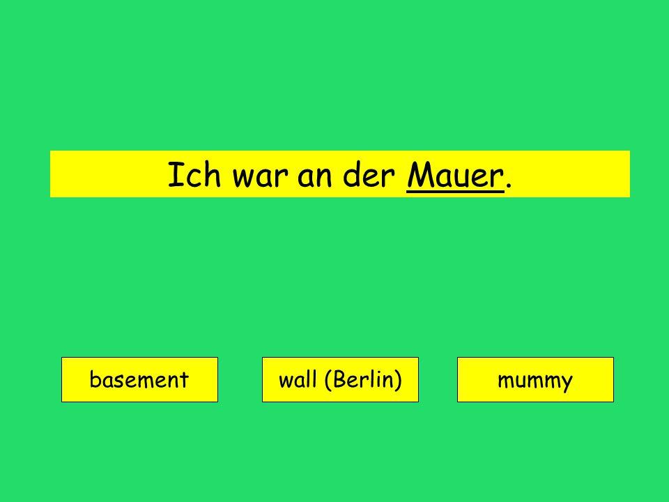 Ich war an der Mauer. basement wall (Berlin)mummy