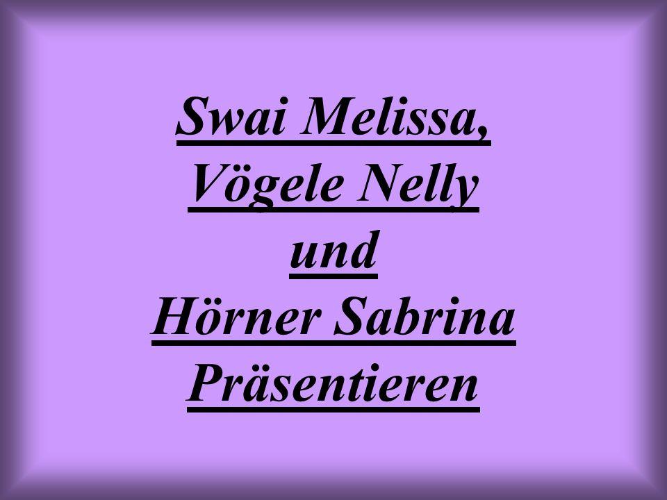Swai Melissa, Vögele Nelly und Hörner Sabrina Präsentieren