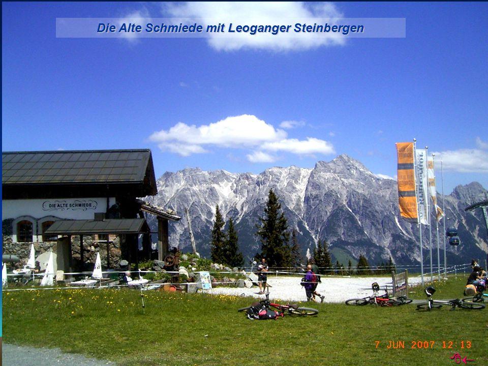 Die Alte Schmiede mit Leoganger Steinbergen 
