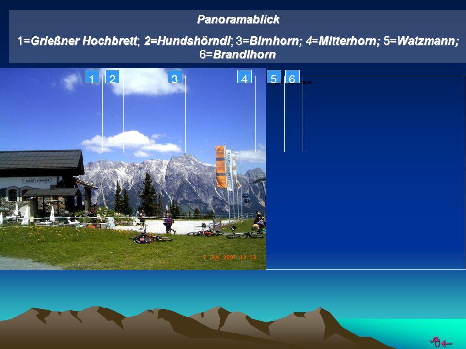 Panoramablick 1=Grießner Hochbrett; 2=Hundshörndl; 3=Birnhorn; 4=Mitterhorn; 5=Watzmann; 6=Brandlhorn 123456 