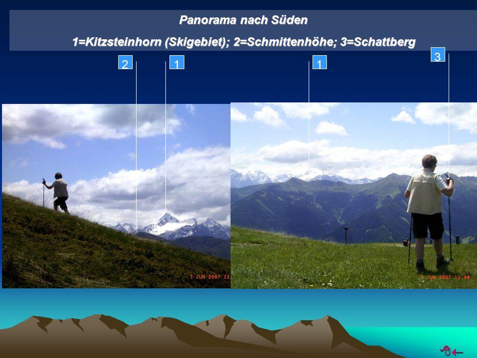 Panorama nach Süden 1=Kitzsteinhorn (Skigebiet); 2=Schmittenhöhe; 3=Schattberg 12 3 1 