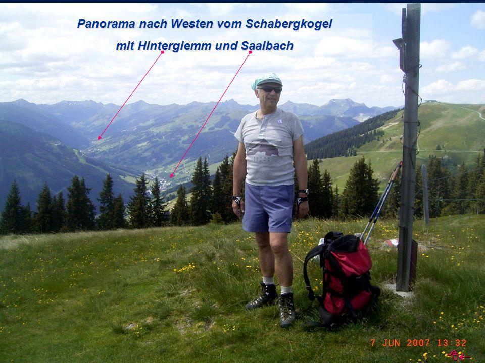 Panorama nach Westen vom Schabergkogel mit Hinterglemm und Saalbach 