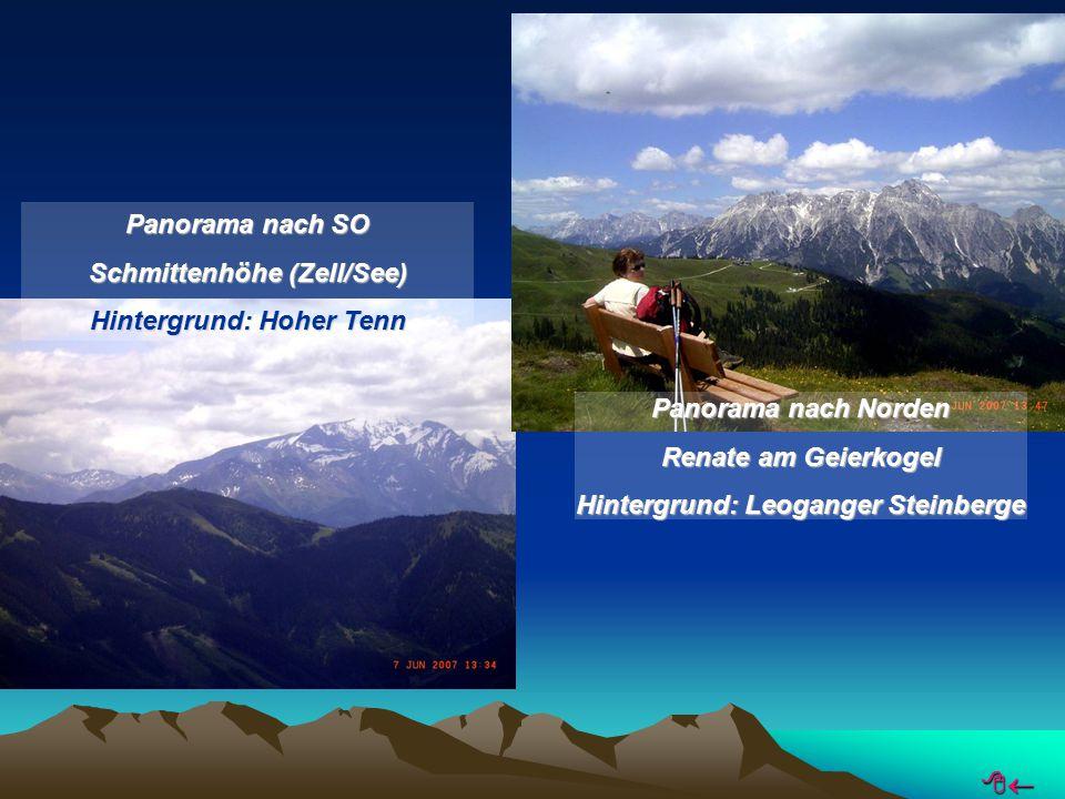 Panorama nach SO Schmittenhöhe (Zell/See) Hintergrund: Hoher Tenn Panorama nach Norden Renate am Geierkogel Hintergrund: Leoganger Steinberge 
