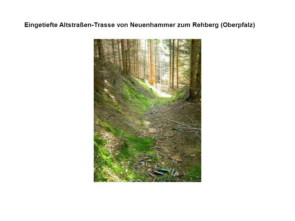 Eingetiefte Altstraßen-Trasse von Neuenhammer zum Rehberg (Oberpfalz)